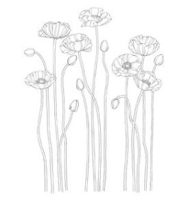 Pleasant Poppies Stamp Brush - Digital Download  133012
