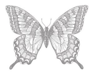 Swallowtail Stamp Brush - Digital Download  133011